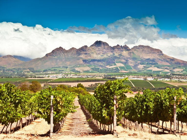 WINELANDS FULL DAY TOUR