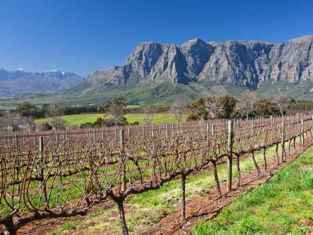 England Cricket Tour to South Africa 2019/2020- Second Test Tour including Winelands