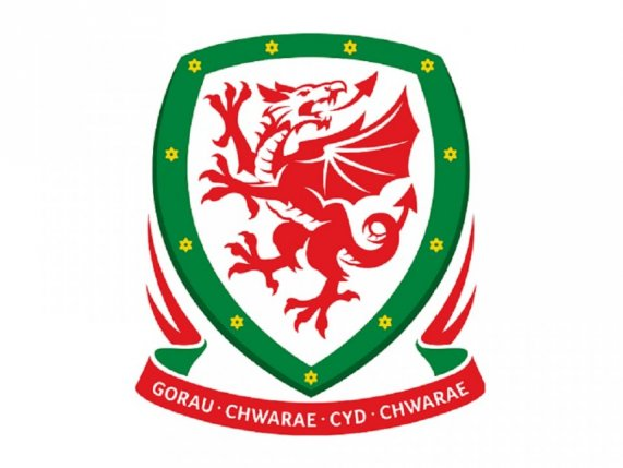 Football Association of Wales Official Supporter